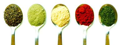5-elemente kochen